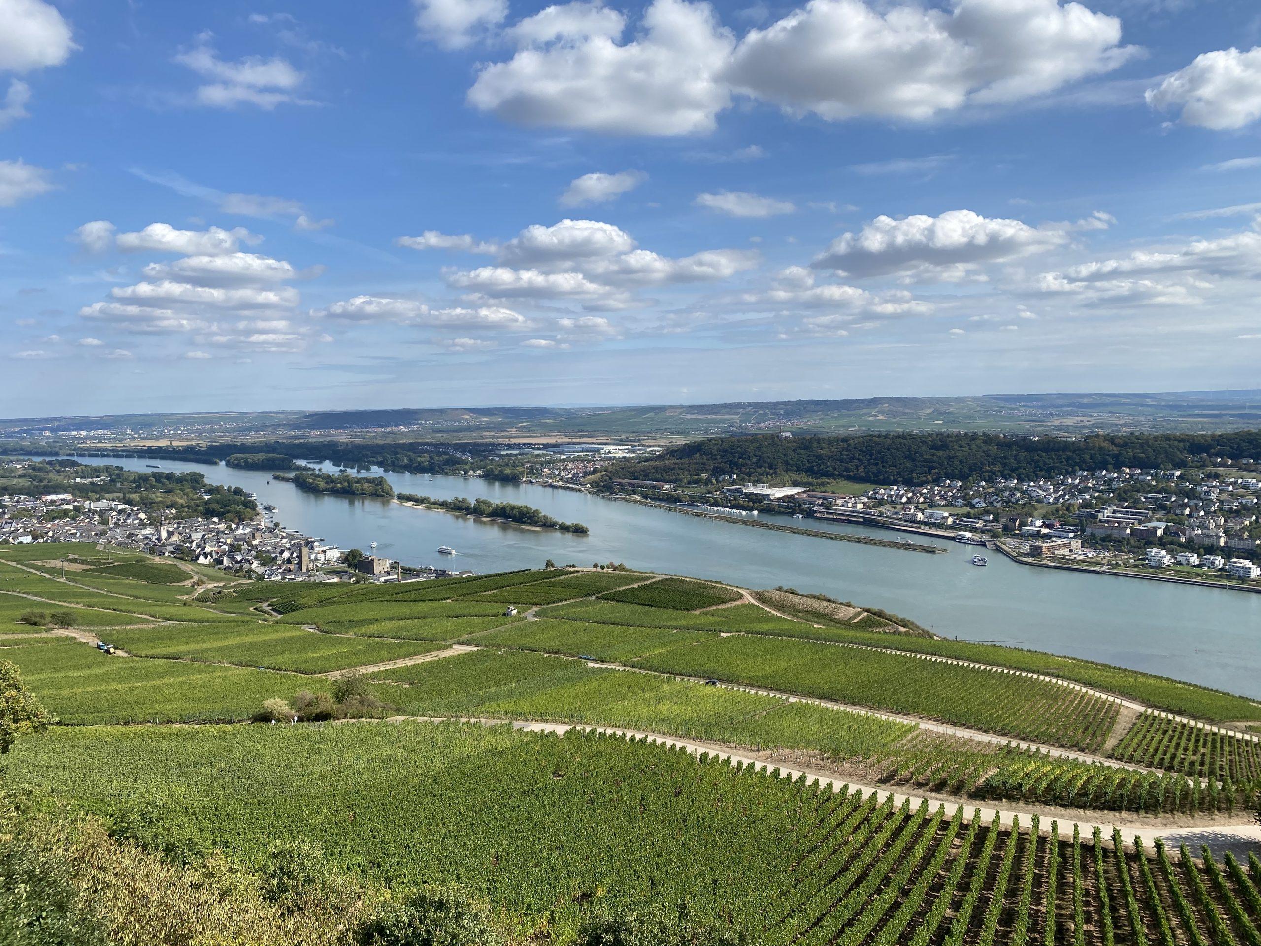 Priorat zu Gast im Rheingau - Collegium Vini Blick vom Niederwald-Denkmal auf die Weinlagen bei Rüdesheim/ Rheingau