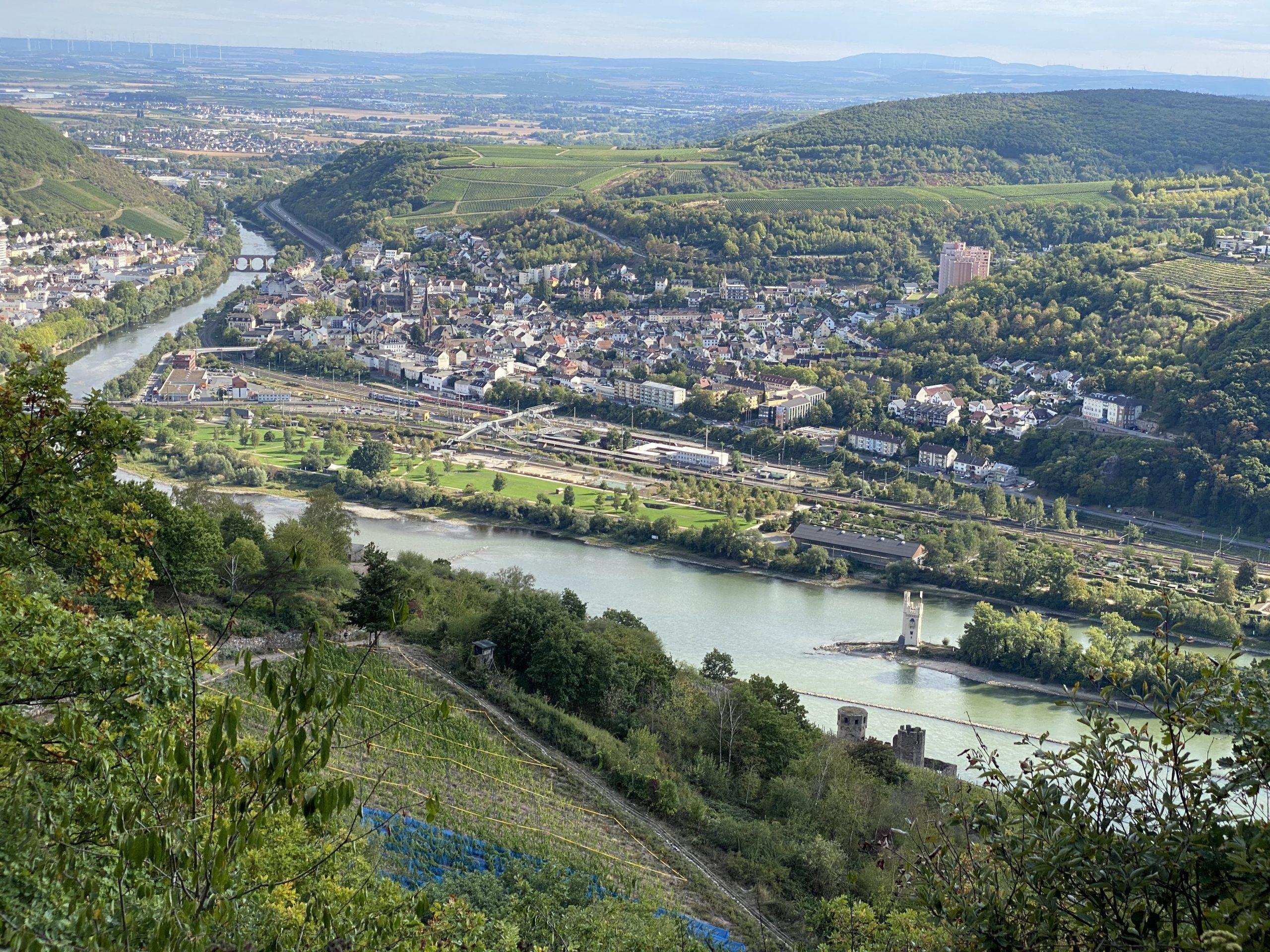 Priorat zu Gast im Rheingau - Collegium Vini Blick auf Bingen und die Nahemündung in den Rhein