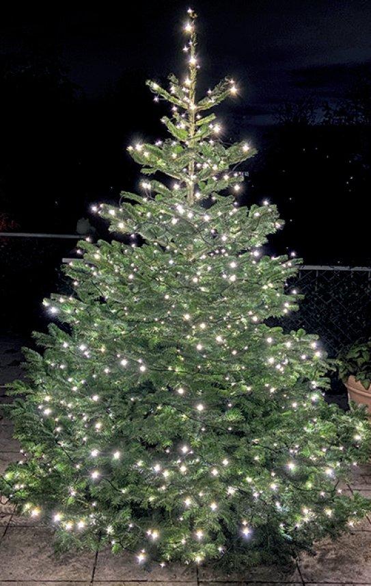 Weihnachtsbaum Hans-Joachim Drissler